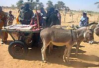 budapest-bamako