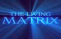 élő mátrix