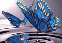 Pillangószárny