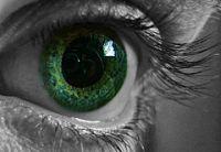 szemek, döntés másképp