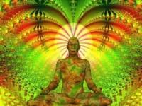 világmeditáció